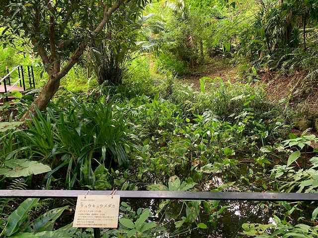 リッツ沖縄ースパ棟行き方6